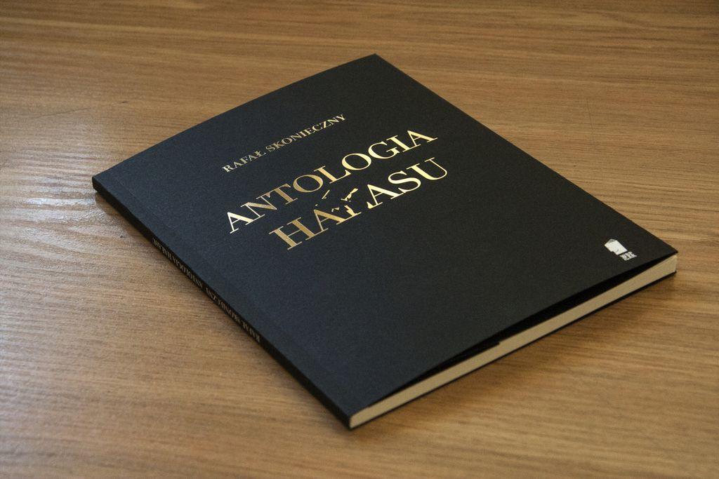 Rafał Skonieczny Antologia hałasu - ZamekCzyta.pl